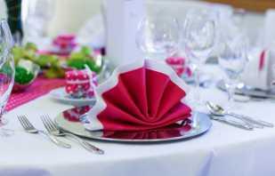 Los matices de elegir servilletas para la mesa festiva, las reglas para su colocación